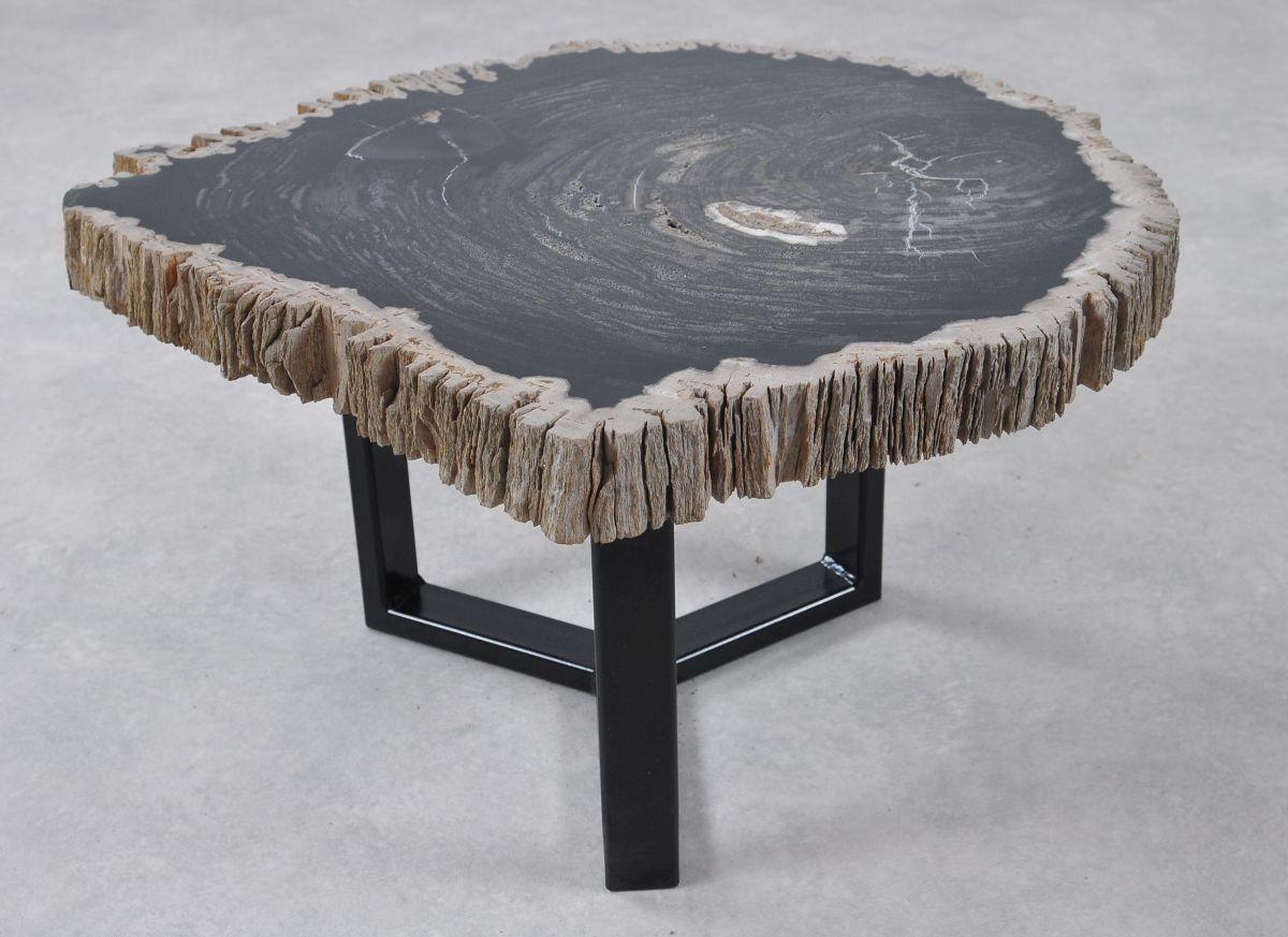 Table basse bois pétrifié 36214