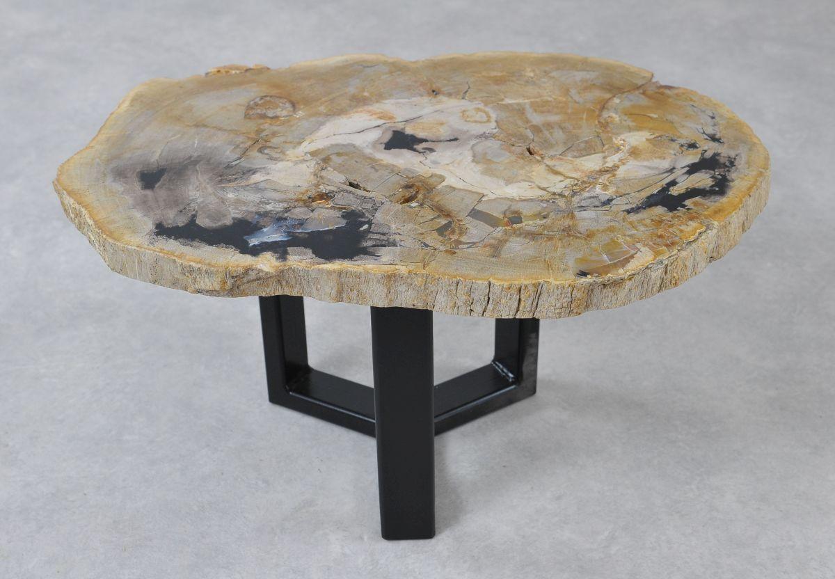 Table basse bois pétrifié 36217