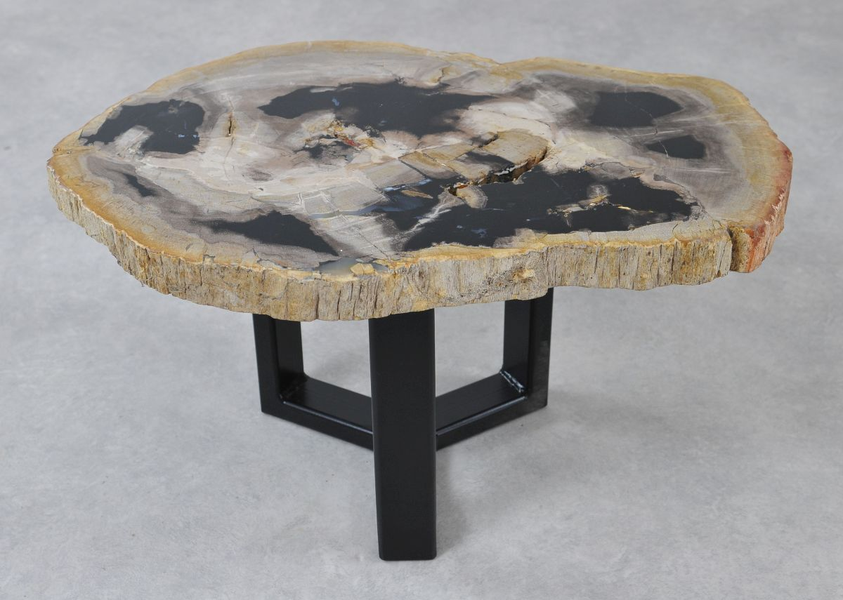 Table basse bois pétrifié 36218