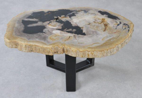Table basse bois pétrifié 36219