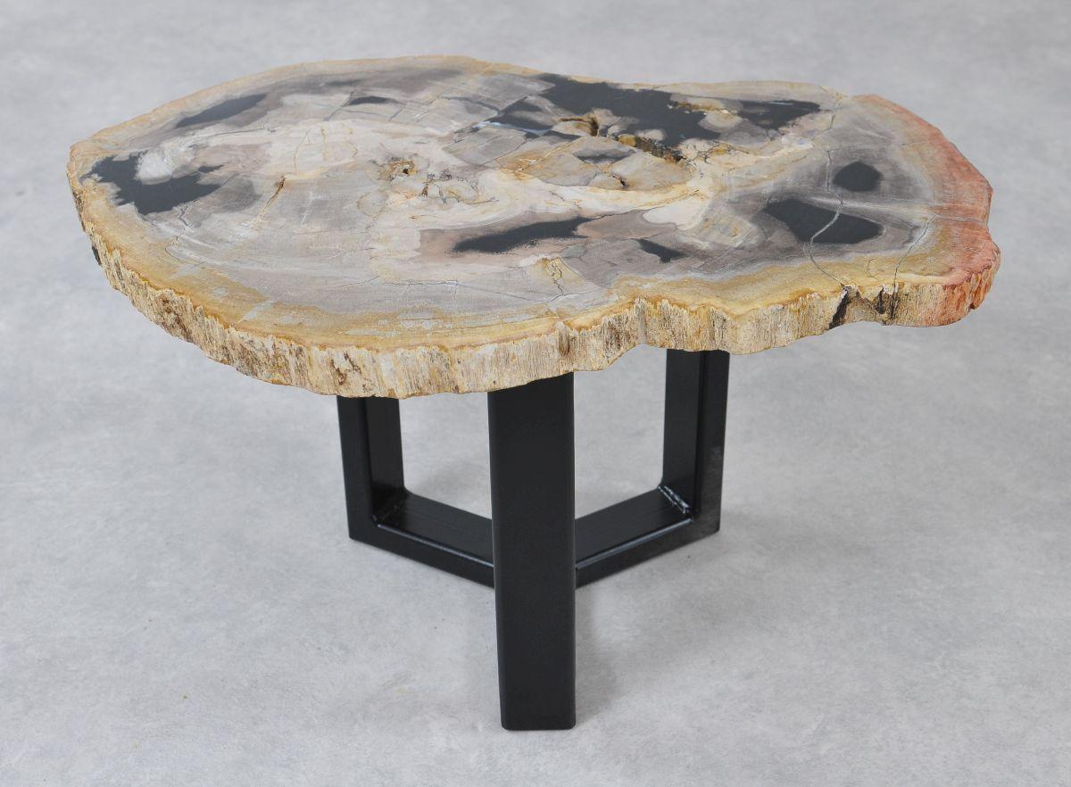 Table basse bois pétrifié 36221