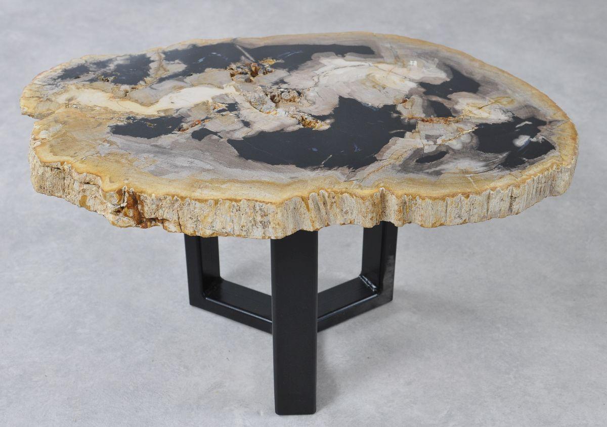 Table basse bois pétrifié 36222