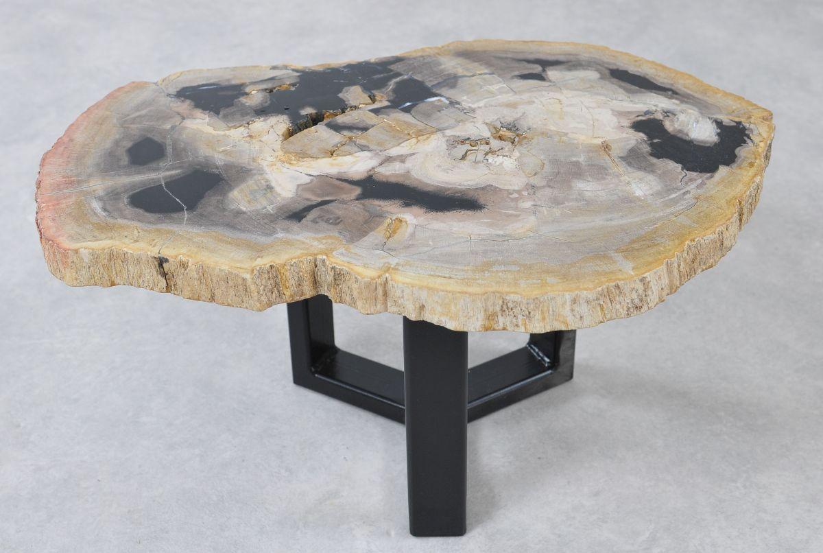 Table basse bois pétrifié 36223