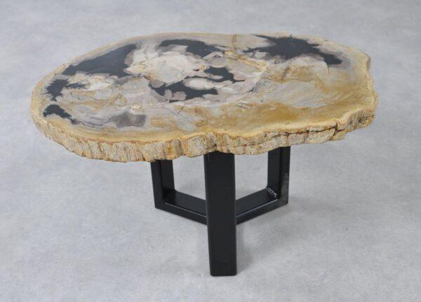 Table basse bois pétrifié 36226