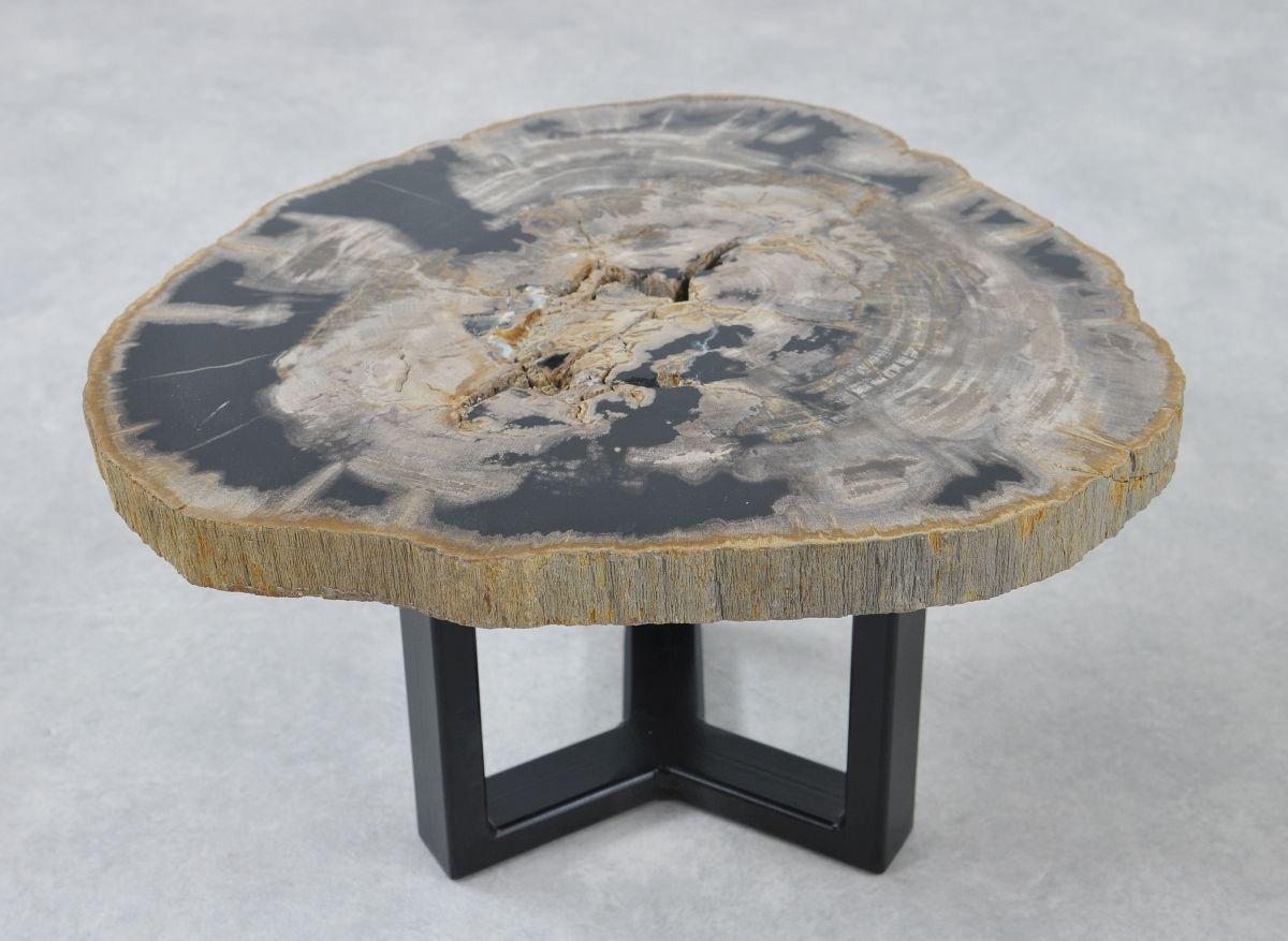 Table basse bois pétrifié 36227