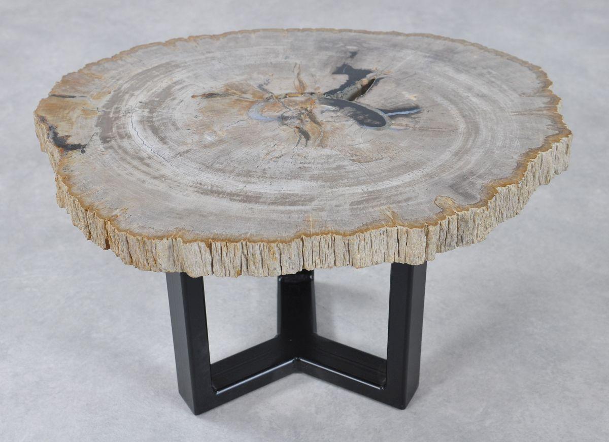 Table basse bois pétrifié 36229