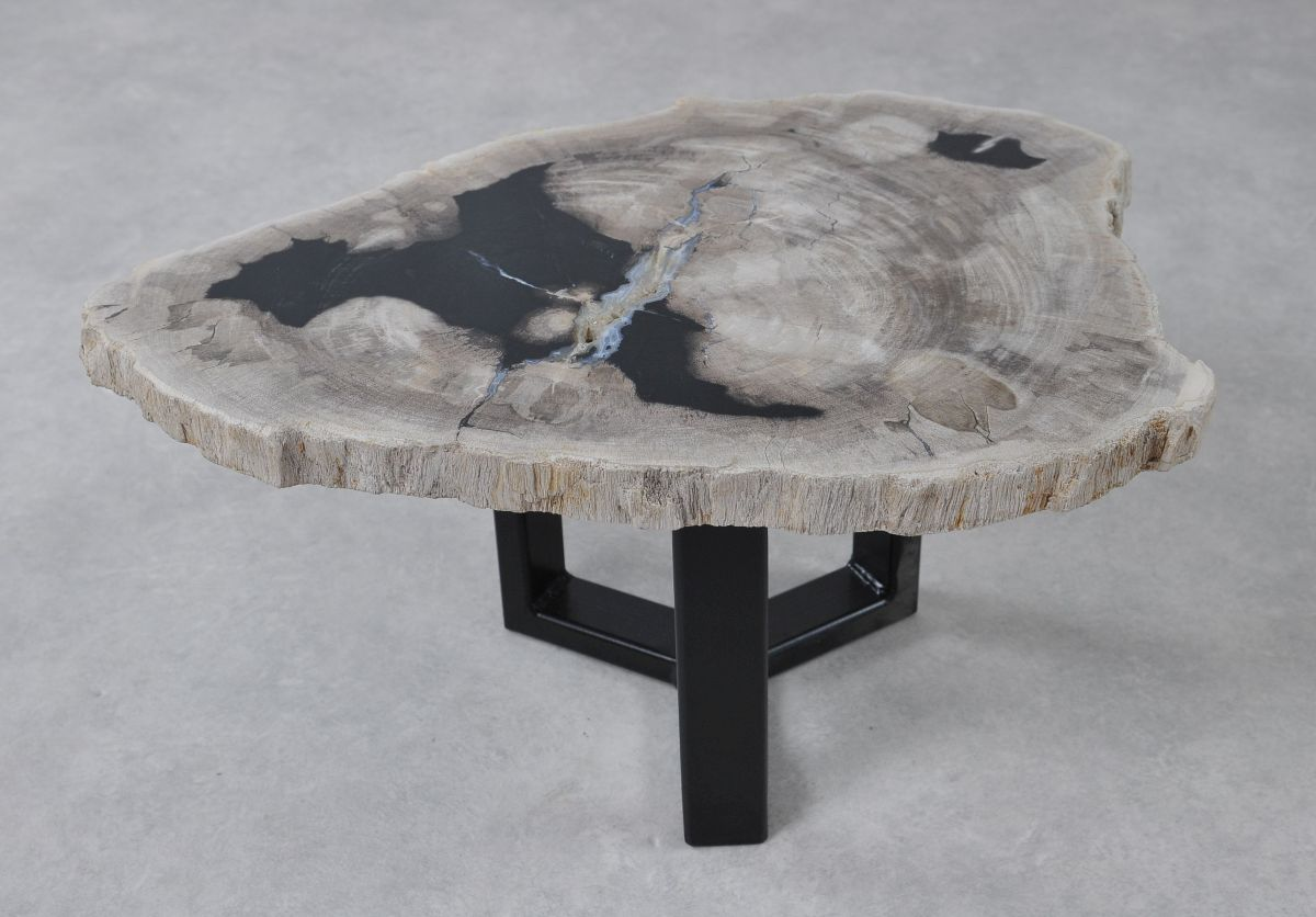 Table basse bois pétrifié 36232