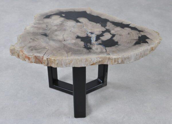 Table basse bois pétrifié 36233