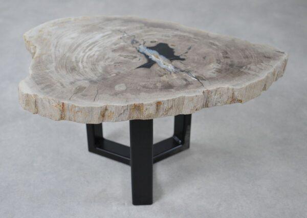 Table basse bois pétrifié 36234