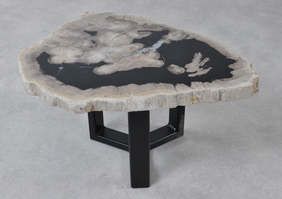 Table basse bois pétrifié 36235