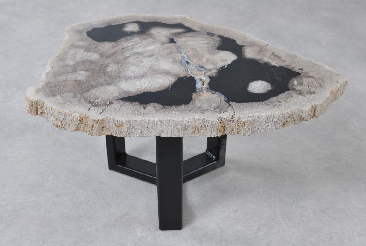 Table basse bois pétrifié 36236