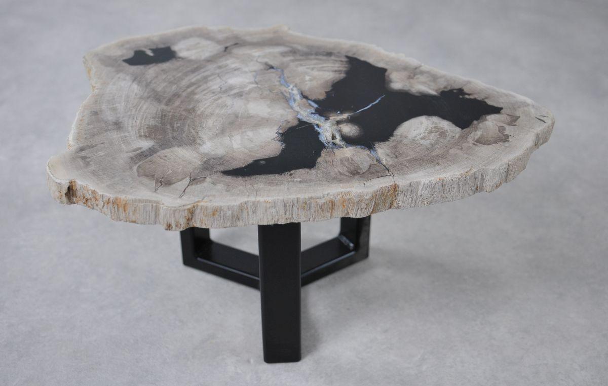 Table basse bois pétrifié 36237