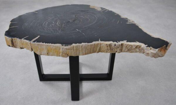 Table basse bois pétrifié 36239