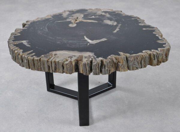 Table basse bois pétrifié 36241