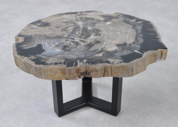 Table basse bois pétrifié 36244