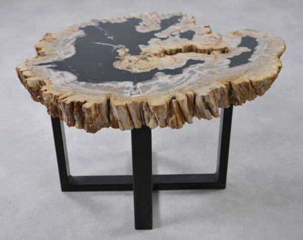 Table basse bois pétrifié 36265