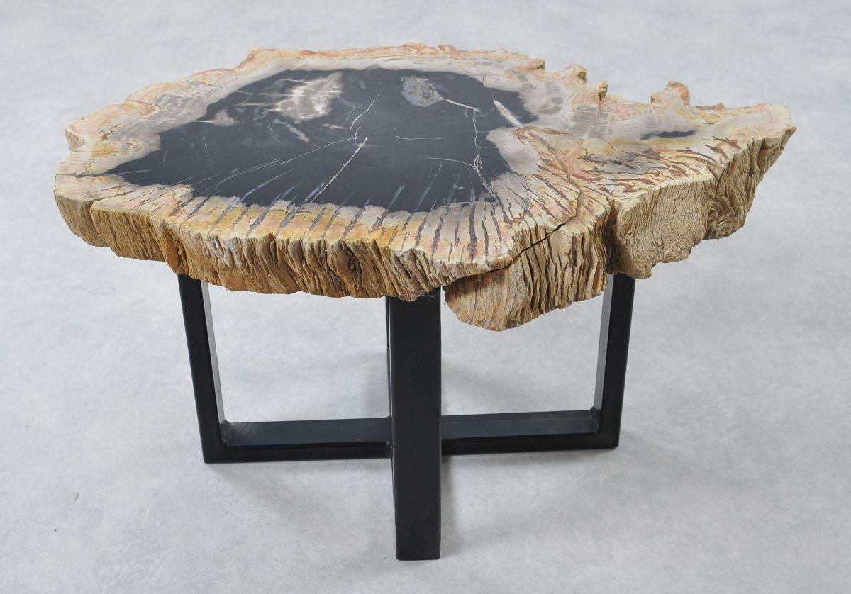Table basse bois pétrifié 36266