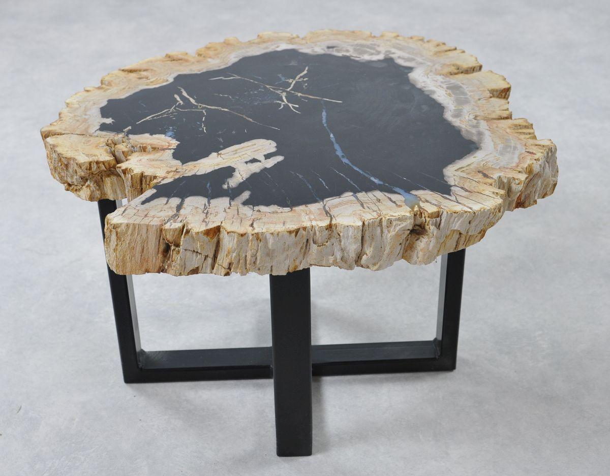 Table basse bois pétrifié 36267