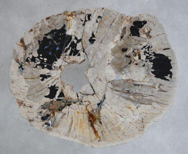 Table basse bois pétrifié 36287