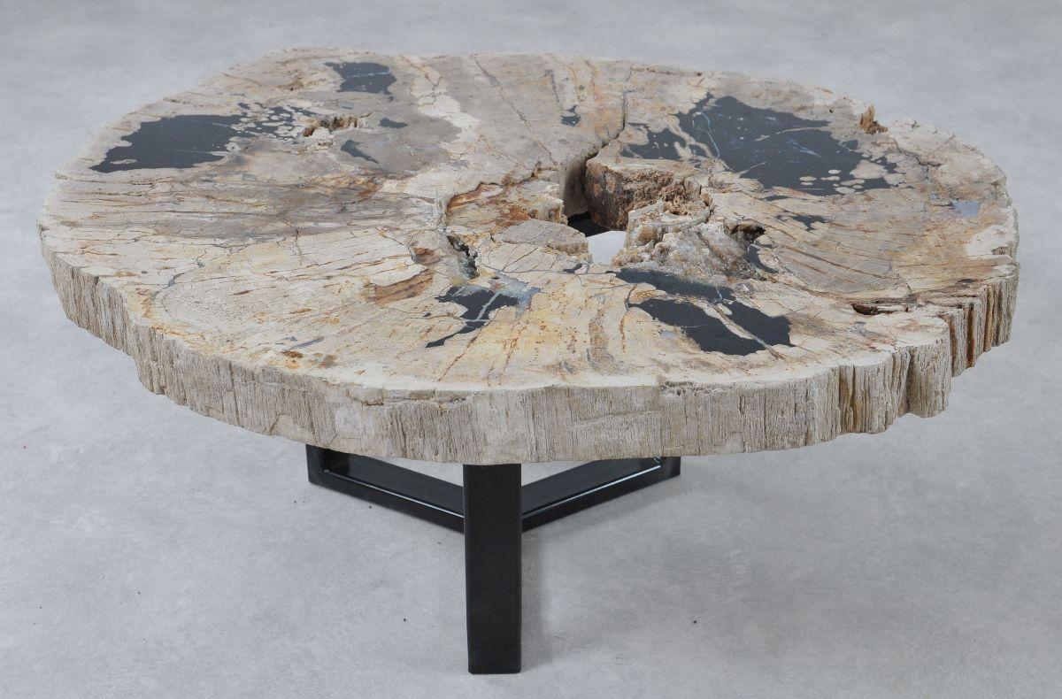 Table basse bois pétrifié 36288