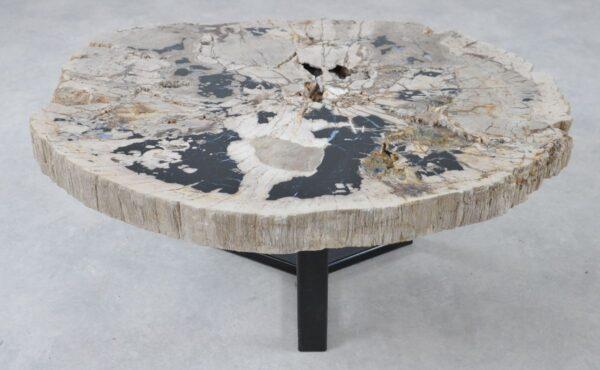 Table basse bois pétrifié 36289
