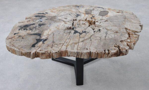 Table basse bois pétrifié 36291