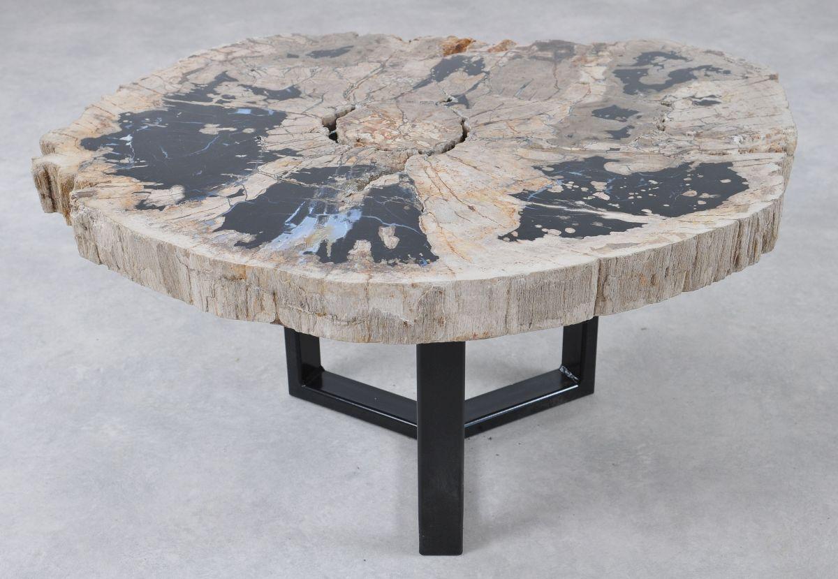 Table basse bois pétrifié 36293