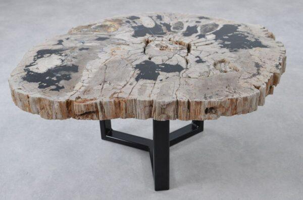 Table basse bois pétrifié 36297