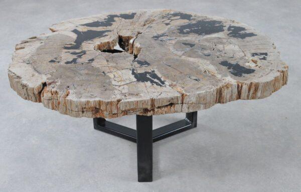 Table basse bois pétrifié 36298