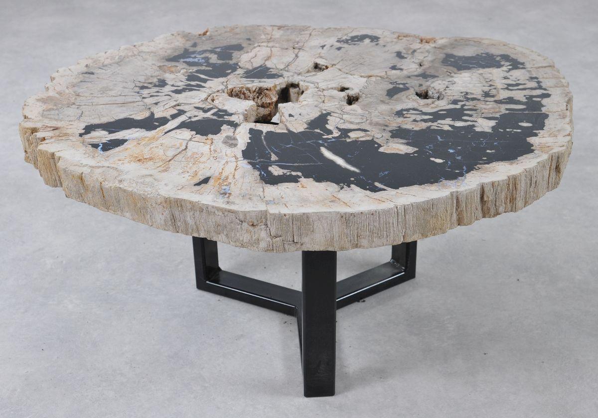 Table basse bois pétrifié 36300