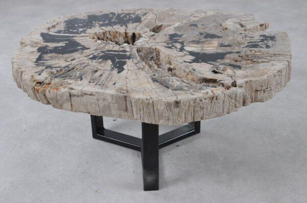 Table basse bois pétrifié 36308