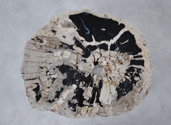 Table basse bois pétrifié 36310