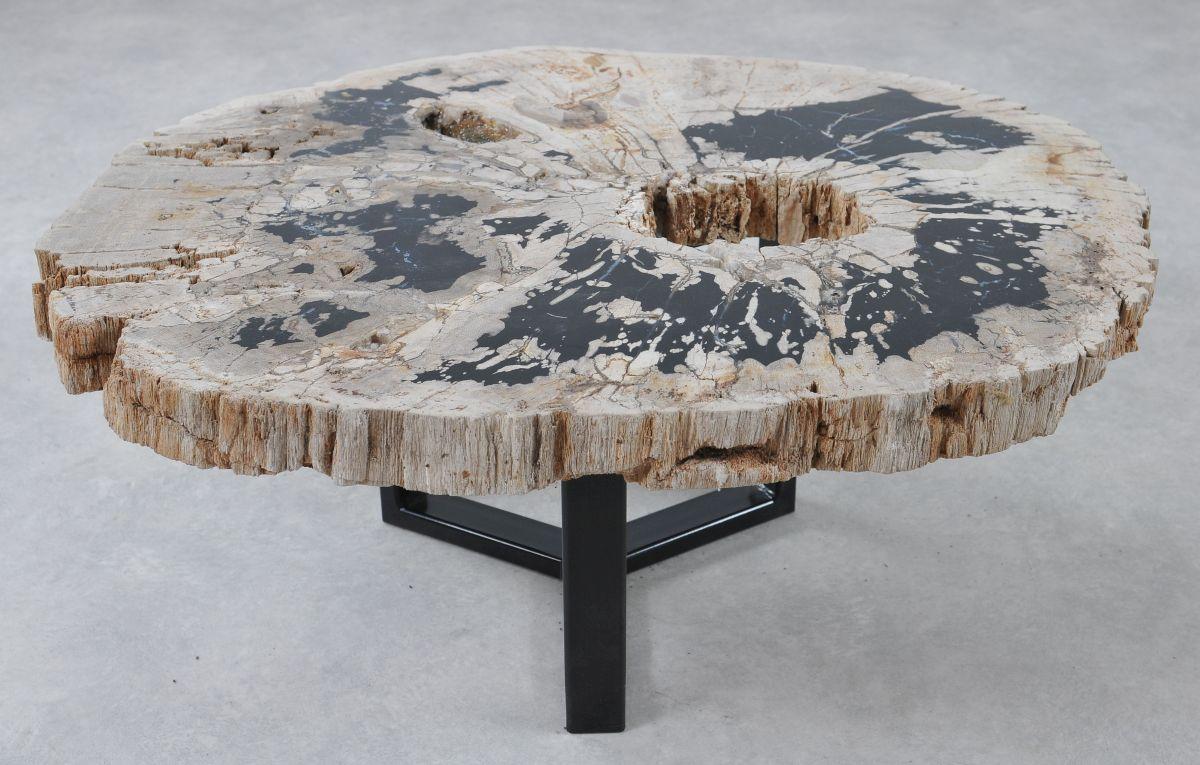 Table basse bois pétrifié 36314