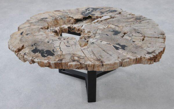 Table basse bois pétrifié 36316