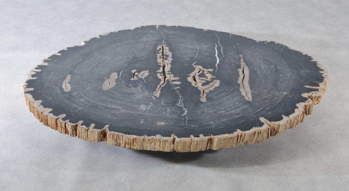 Table basse bois pétrifié 36367