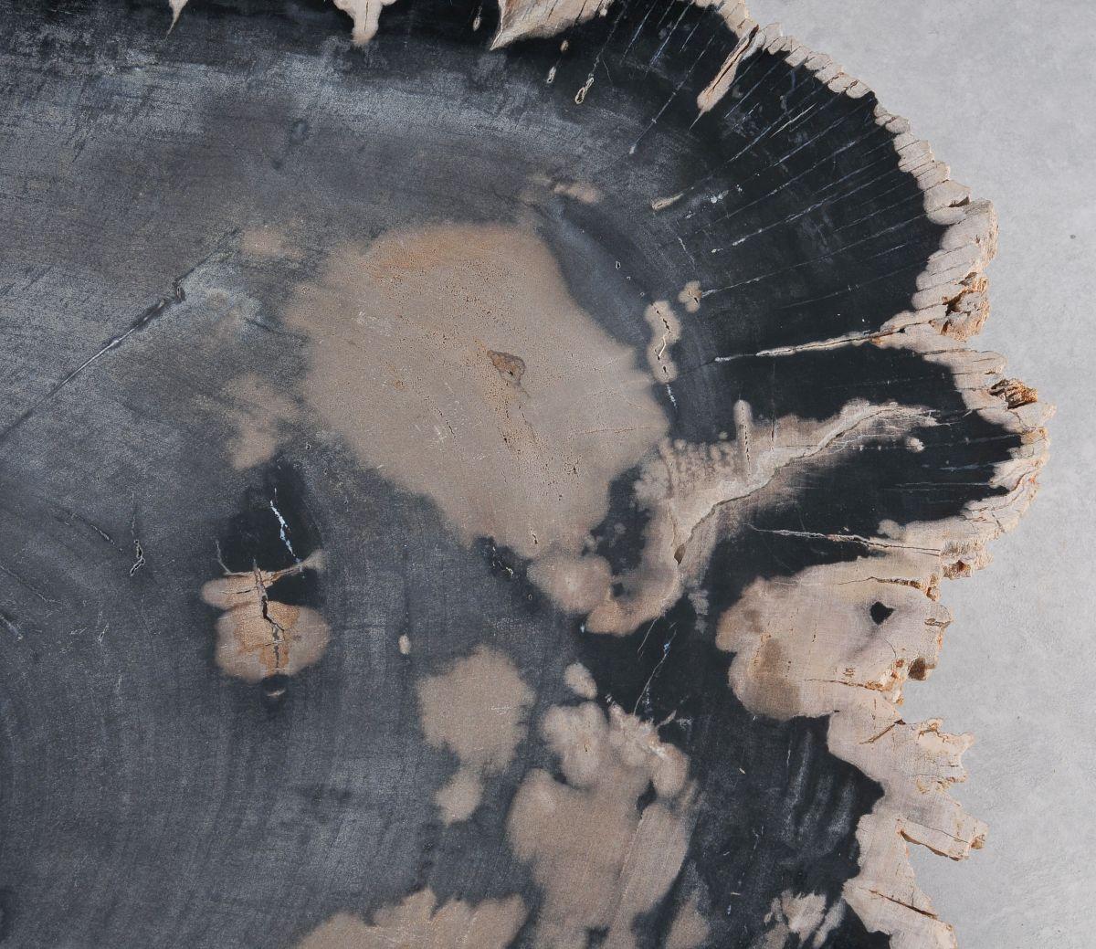 Table basse bois pétrifié 36368