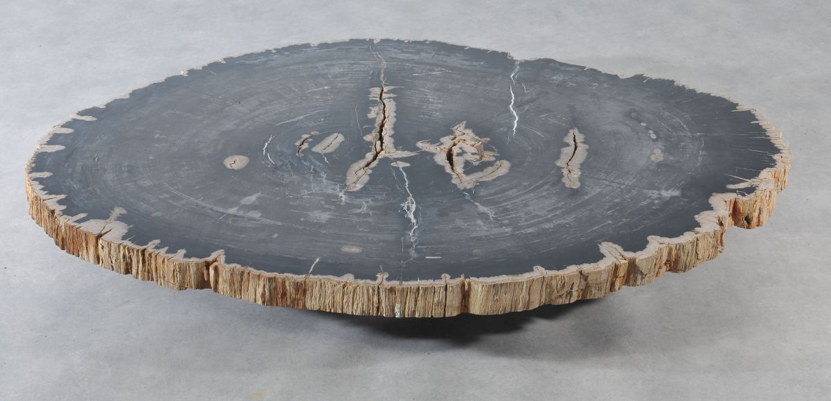 Table basse bois pétrifié 36369