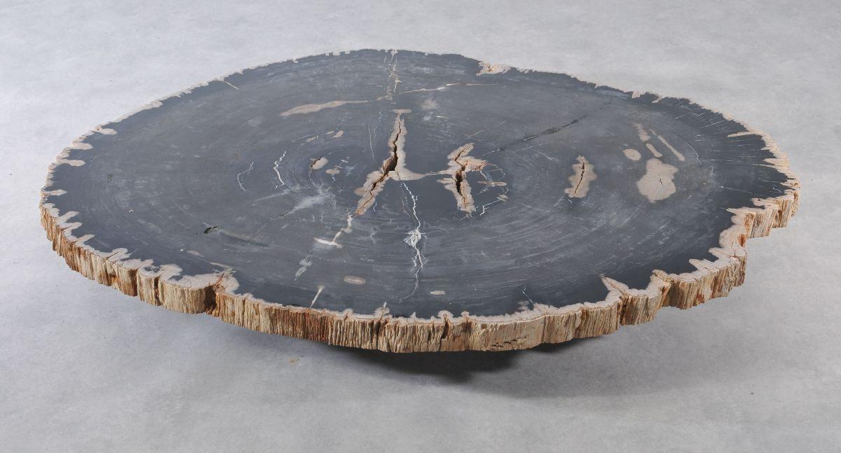 Table basse bois pétrifié 36370