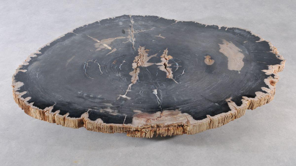 Table basse bois pétrifié 36371