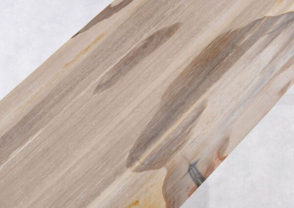 Table console bois pétrifié 36113