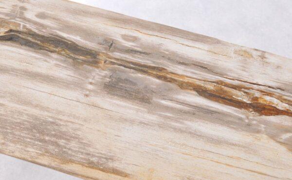 Table console bois pétrifié 36118