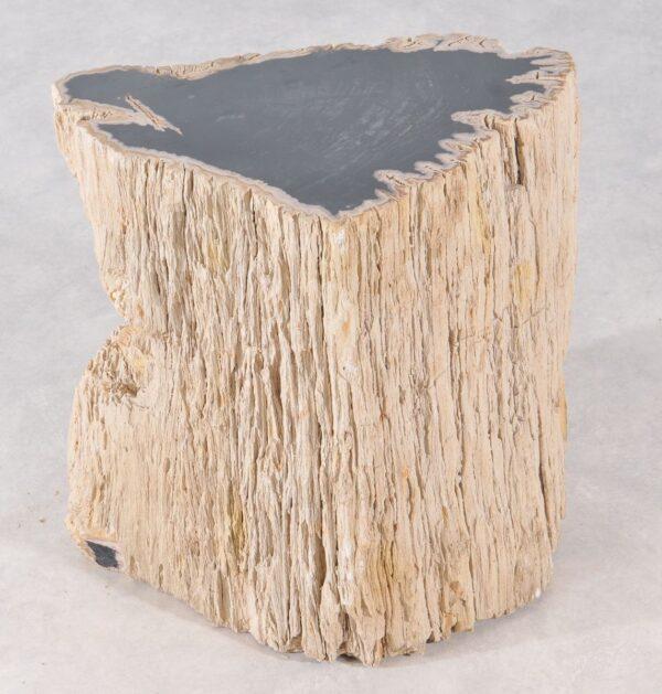Table d'appoint bois pétrifié 36006