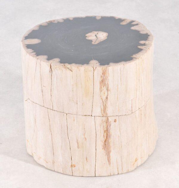 Table d'appoint bois pétrifié 36007