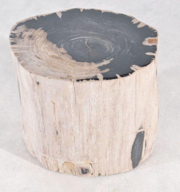 Table d'appoint bois pétrifié 36013