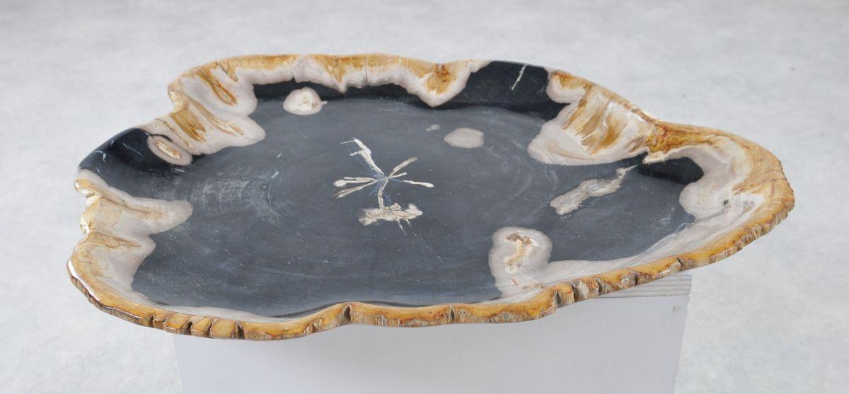 Teller versteinertes Holz 36042