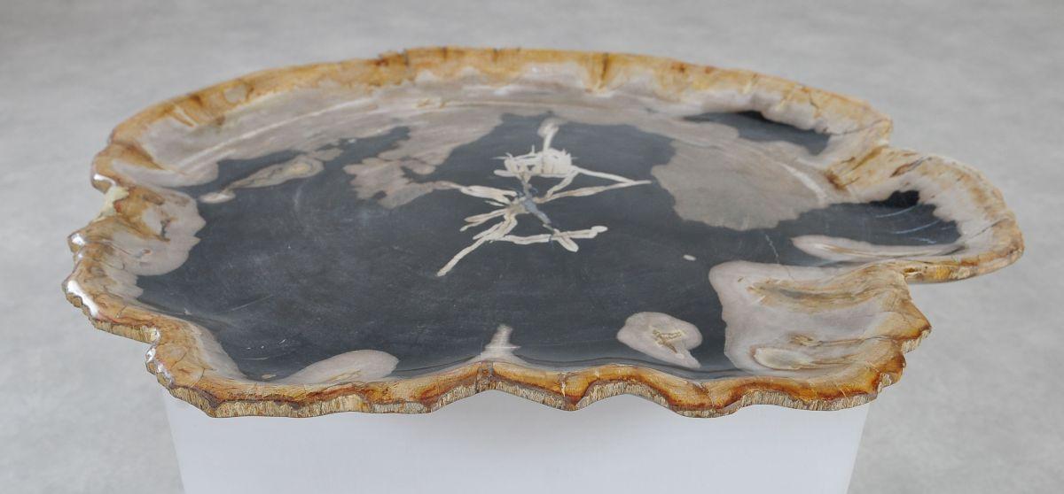 Teller versteinertes Holz 36046