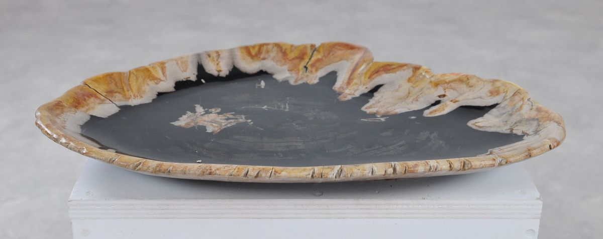 Teller versteinertes Holz 36049b