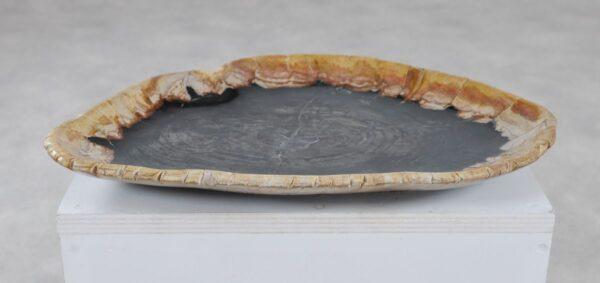 Teller versteinertes Holz 36049d