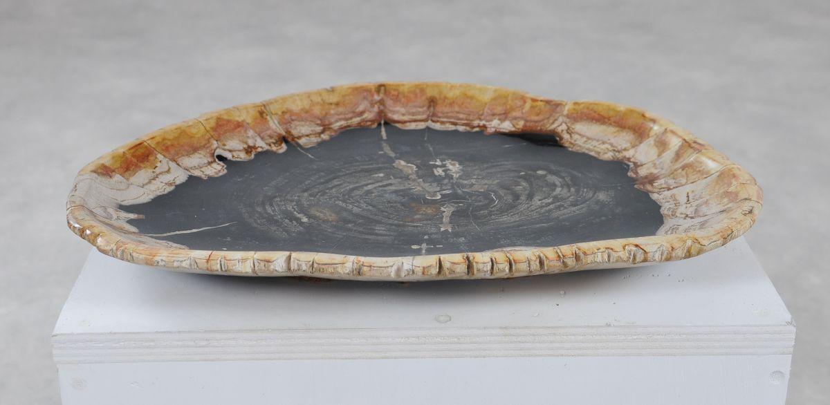 Teller versteinertes Holz 36049j