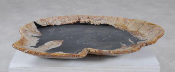 Teller versteinertes Holz 36049k